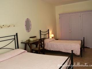 Residenze l'Alberata - Apartment Fabiola - Collepepe vacation rentals