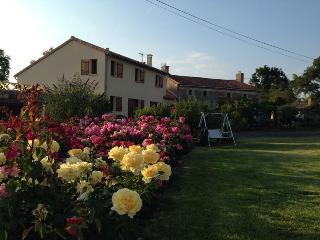 Beautiful Gite with Internet Access and Satellite Or Cable TV - Deux-Sevres vacation rentals