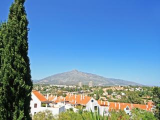 2 bed apartment, Mezquital Nueva Andalucia (395) - Nueva Andalucia vacation rentals