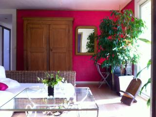 Nice 1 bedroom Apartment in Annecy - Annecy vacation rentals