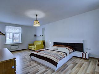 Central Apartment - Saint Petersburg vacation rentals