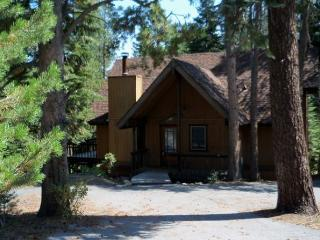 Leeloo's Cabin in the Woods - North Tahoe vacation rentals