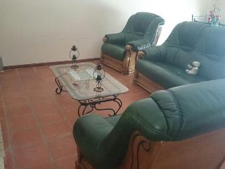 Perfect Condo with Television and Microwave - Torres Novas vacation rentals