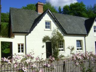 Forest Byre, Newtown, Mid Wales SY16 4DW - Newtown vacation rentals