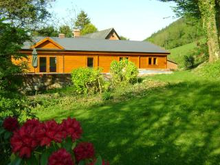 Forest Lodge private Hot Tub, Mid Wales SY16 4DW. Superfast fibre WiFi - Newtown vacation rentals