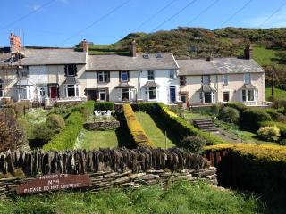 Comfortable Cottage with Internet Access and Satellite Or Cable TV - Mortehoe vacation rentals