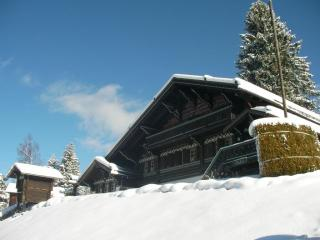 Traditional Chalet, Ski-in ski-out! Sleeps 12 - Villars-sur-Ollon vacation rentals