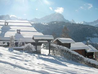 Traditional Chalet, Ski-in ski-out! Sleeps 12 - Villars-sur-Ollon vacation rentals