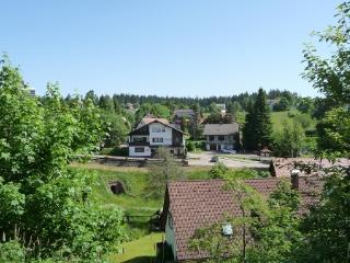 co-propriété à côté de l'hotêl Klosterhof - Freudenstadt vacation rentals