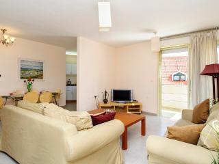 central 2 bedrooms + 2 bathrooms ref 36 - Ra'anana vacation rentals