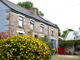 Room in quiet cottage near Shannon airport, places of interest and hiking trails - Feakle vacation rentals