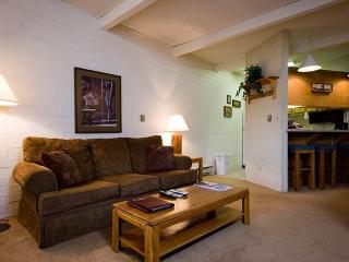 Ski Time Square - ST314 - Steamboat Springs vacation rentals