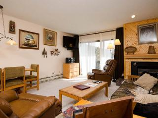 Convenient Condo with Deck and Internet Access - Steamboat Springs vacation rentals