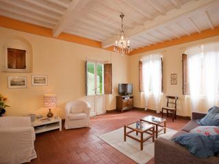 Luano's villa - Lucca vacation rentals