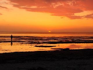 Willapa Bay Beachfront - Brian Head vacation rentals
