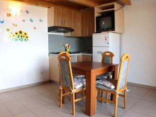 Studio apartment for 4 people - Novalja vacation rentals