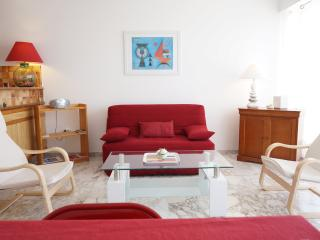 Ideally located 1 Bd Apt with terrace Nice Central - Nice vacation rentals
