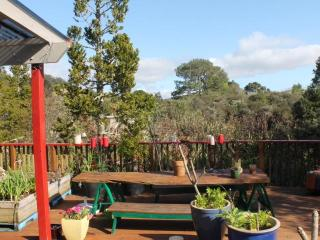 Beautiful Whitianga Bed and Breakfast rental with Deck - Whitianga vacation rentals