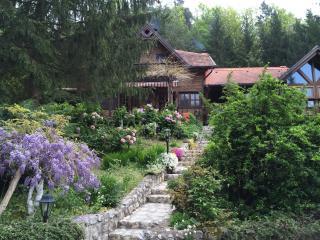 Perfect 5 bedroom House in Trakoscan - Trakoscan vacation rentals