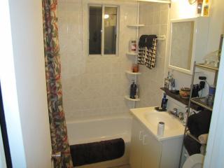 Nice 1 bedroom Condo in Saint-Lambert - Saint-Lambert vacation rentals