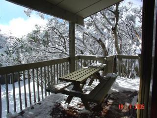 Cawarra Ski Club - Mt Buller vacation rentals