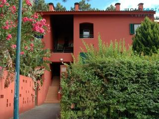 Pine Red Apartment - Setubal District vacation rentals