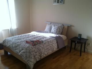 Large flat blocks from beach and Golden Gate park - San Francisco vacation rentals