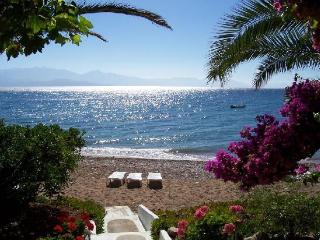 Messenia Peloponesse Beach Front Villas- Sleep 4/5 - Messini vacation rentals