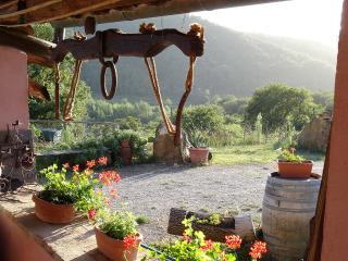 Between Florence and Siena  farmhouse TEGLINE - Radda in Chianti vacation rentals