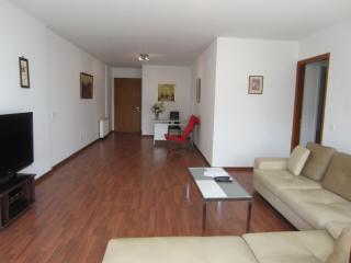 Centrally located,safe and quite area - Nicosia vacation rentals