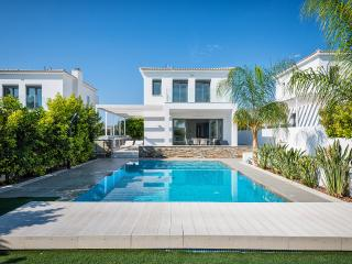 Sea Front Villa, Limassol - Limassol vacation rentals