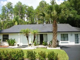 7 Room Golf, SPA & Tennis Saddlebrook Villa - Oak Hill vacation rentals