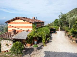 Villa dell'Ortensia - San Giuliano Terme vacation rentals