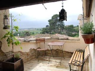 Lovely holiday rental in France near Pezenas and coast from €400pw - Nezignan l'Eveque vacation rentals