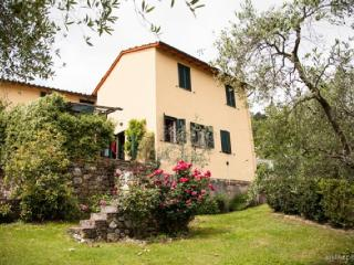 Bright 2 bedroom House in Lucca - Lucca vacation rentals