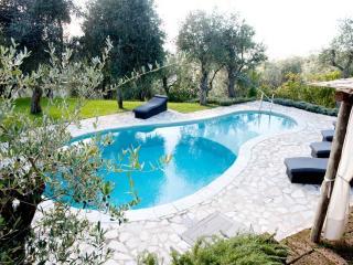 Sunny Pietrasanta Villa rental with Internet Access - Pietrasanta vacation rentals