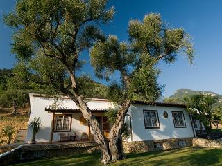 Charming 4 bedroom Pietrasanta House with Internet Access - Pietrasanta vacation rentals