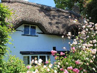 Nice Cottage with Washing Machine and Television - Blandford Forum vacation rentals
