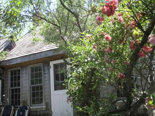 Charming Secluded Beach Cottage - Truro vacation rentals