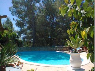 Nice House with Internet Access and Dishwasher - Santa Eulalia del Rio vacation rentals