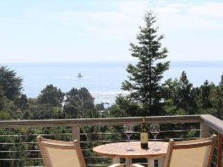 Ocean View Luxury on the Mendocino Coast - Gualala vacation rentals