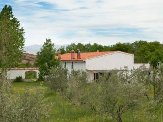 Beautiful 6 bedroom Bed and Breakfast in Lanteira - Lanteira vacation rentals