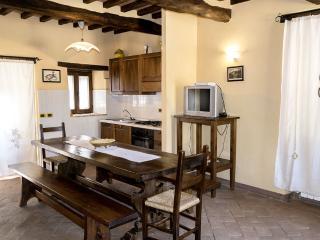 Il Roseto-a lovely rental in Cortona countryside - Cortona vacation rentals