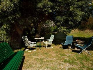Il Colle-Cortona rental between Tuscany & Umbria - Cortona vacation rentals