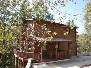 A Place in the Woods- Allow yourself to reconnect with nature and be pamper! - Blairsville vacation rentals