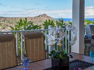 OVK-FOR NATURE LOVERS, BIG VIEWS OF VOLCANO BBB A+ - Honolulu vacation rentals
