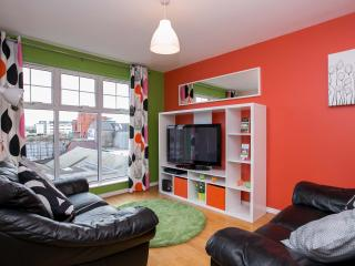 City Centre 2 Bed Apt parking WIFI great location - Belfast vacation rentals