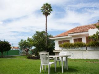 Family Villa at Tenerife North - Tacoronte vacation rentals