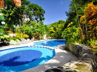 Playa del Carmen Paradise Private Retreat Poolhome - Colonia Luces en el Mar vacation rentals