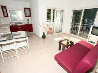 Apartment Vita - Mandre vacation rentals